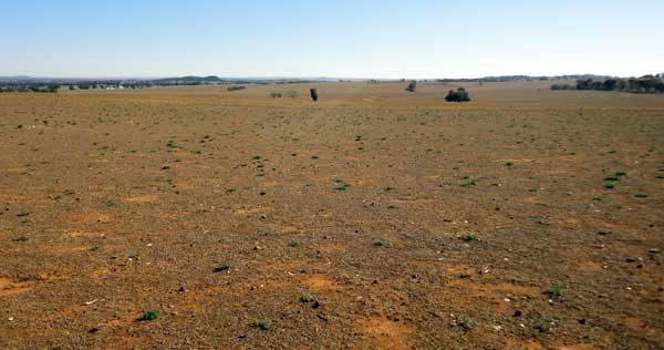 suntop solar farm latest news
